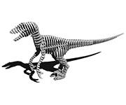 Raptor 290
