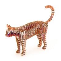 Cat146_chiso