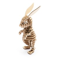 Rabbit122_natural