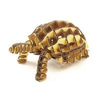 Tortoise104_ngold