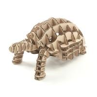 Tortoise104_natural