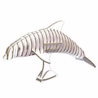 Dolphin 137_white